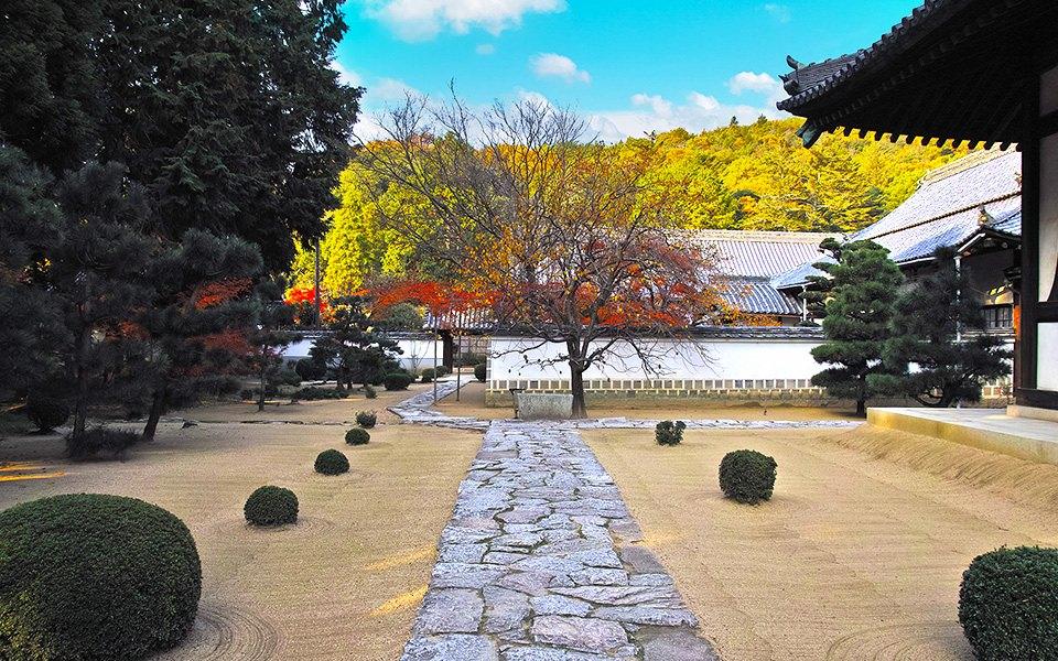 神社 - 庭園 - 石畳